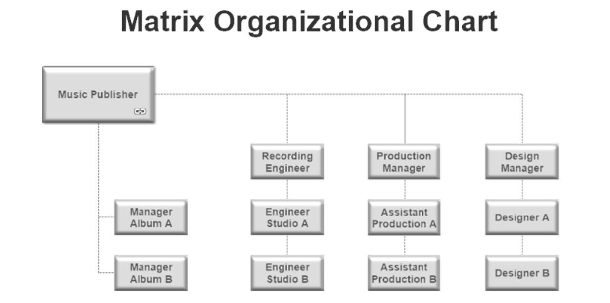 Matrix Organizational Chart Example