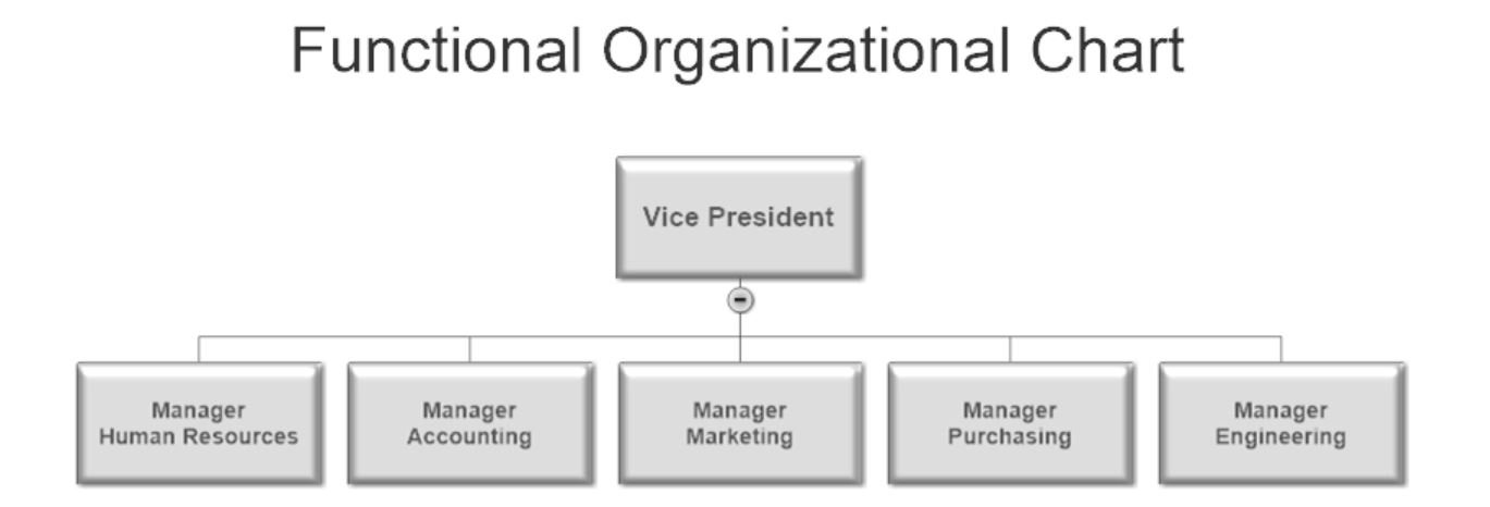 Functional Organizational Chart Example